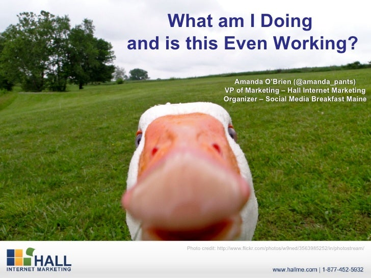 What am I Doing  and is this Even Working? Amanda O'Brien (@amanda_pants) VP of Marketing – Hall Internet Marketing Organi...