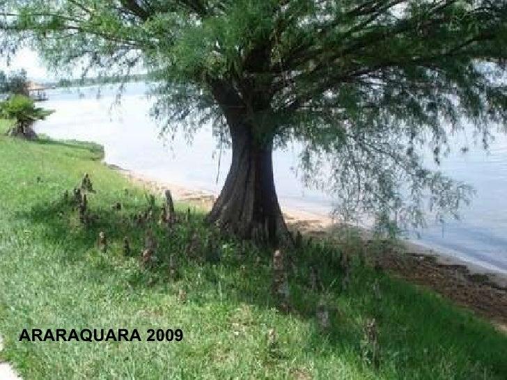 ARARAQUARA 2009