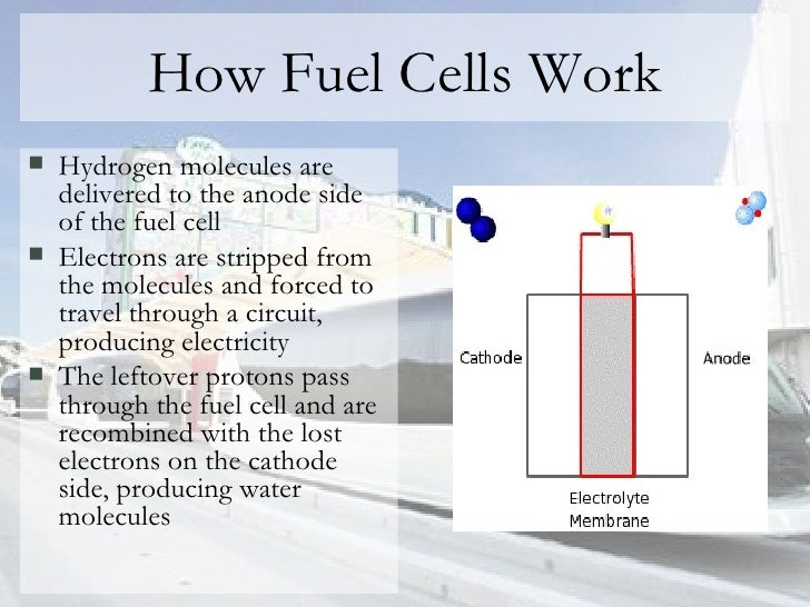 How Fuel Cells Work <ul><li>Hydrogen molecules are delivered to the anode side of the fuel cell </li></ul><ul><li>Electron...