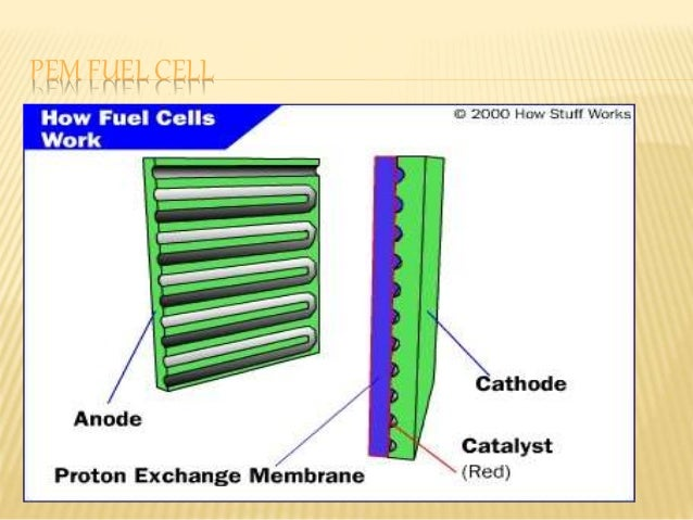 Fuel cell ,PEM Fuel Cell