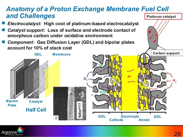 Fuel Cells By Argonne