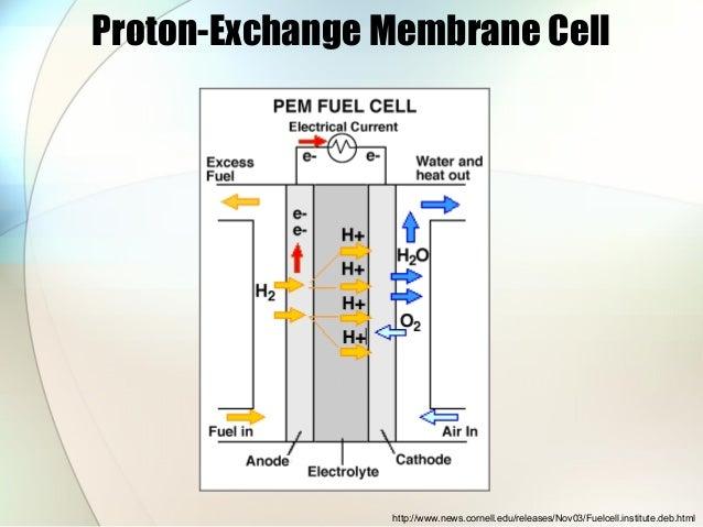 Fuel cell ppt slides
