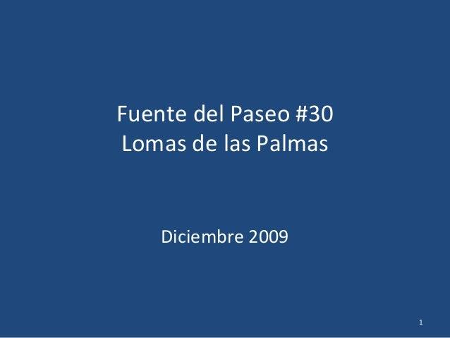 Fuente del Paseo #30 Lomas de las Palmas Diciembre 2009 1