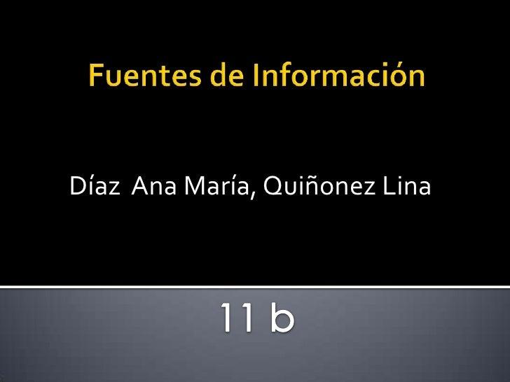 Fuentes de Información<br />Díaz  Ana María, Quiñonez Lina<br />11 b<br />