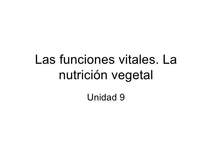 Las funciones vitales. La nutrición vegetal Unidad 9
