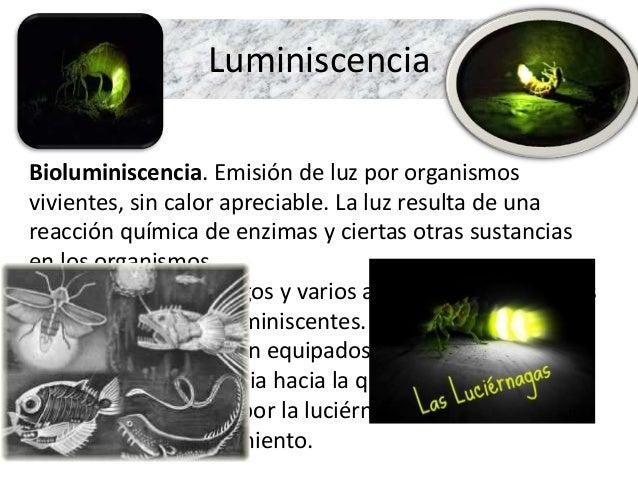 Fuentes Naturales De Luz
