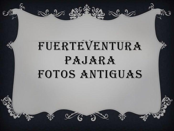 FUERTEVENTURAPAJARAFOTOS ANTIGUAS<br />