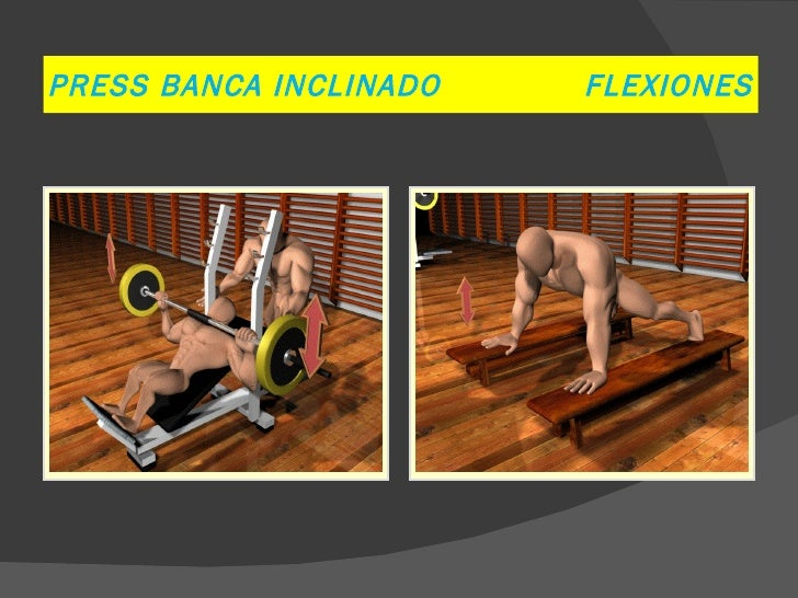 PRESS BANCA INCLINADO   FLEXIONES