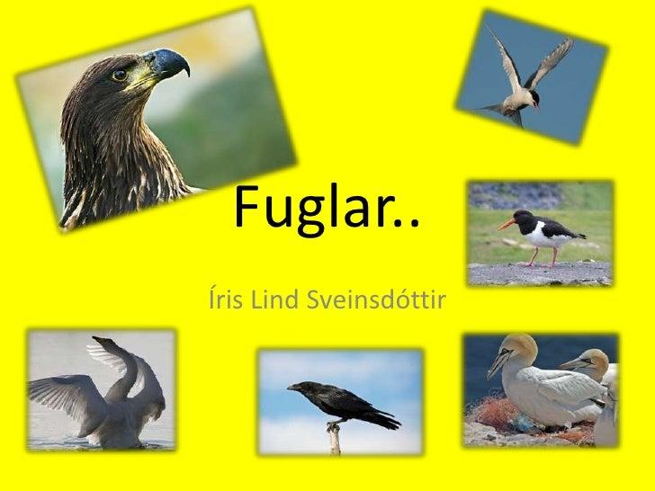Íris Lind Sveinsdóttir<br />Fuglar..<br />