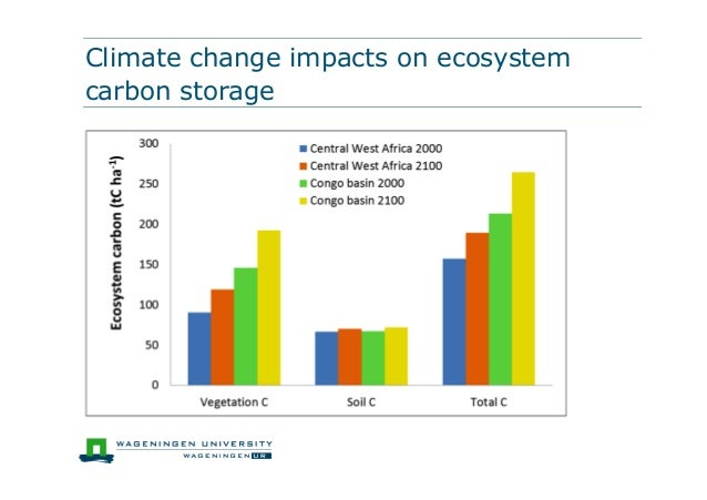 Climate change impacts on ecosystemcarbon storage