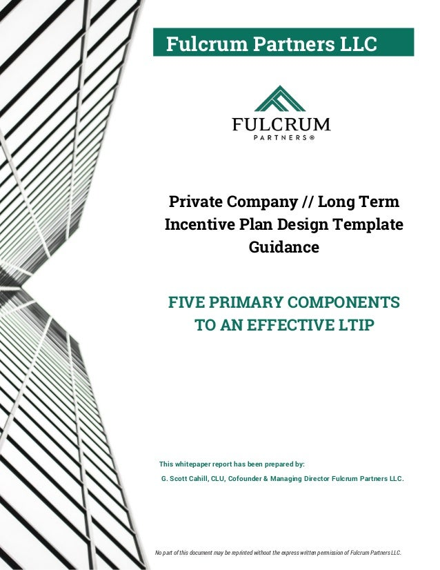 Fulcrum Partners LLC Private Company // Long Term Incentive Plan Design Template Guidance FIVE PRIMARY COMPONENTS TO AN EF...