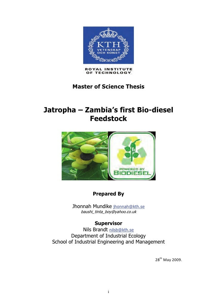 Phd thesis biodiesel