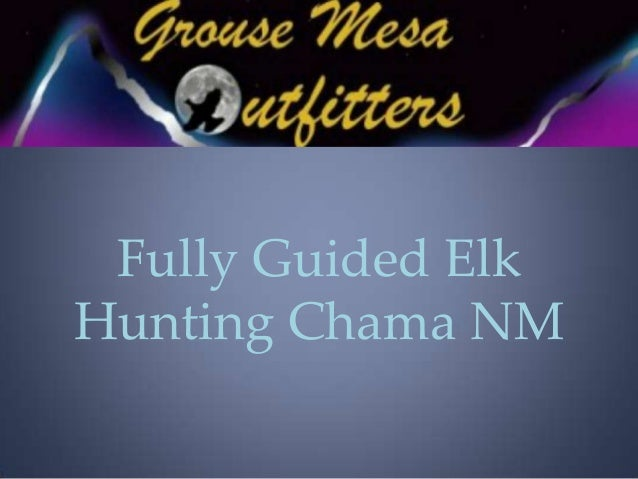 Fully Guided Elk Hunting Chama NM
