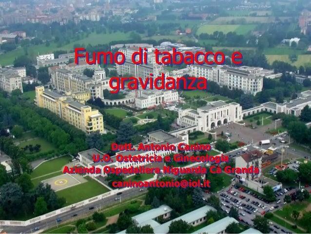 Fumo di tabacco e gravidanza Dott. Antonio Canino U.O. Ostetricia e Ginecologia Azienda Ospedaliera Niguarda Cà Granda can...