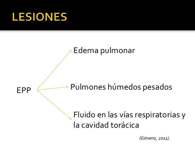 Gamma glutamil transferasa