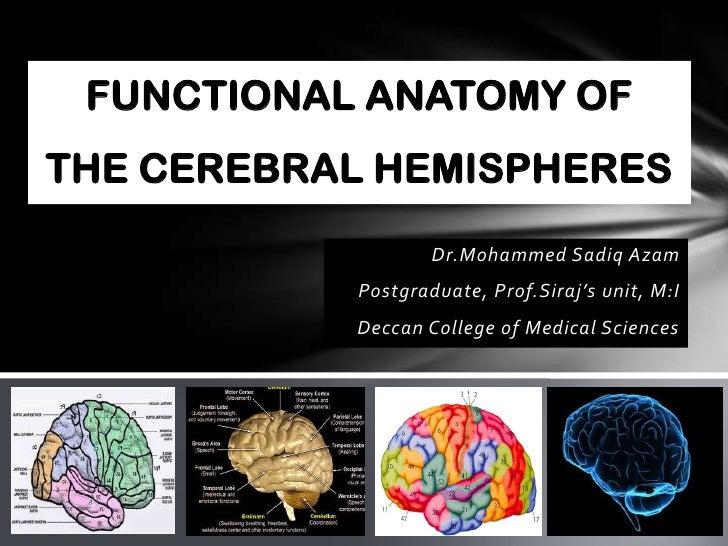 FUNCTIONAL ANATOMY OFTHE CEREBRAL HEMISPHERES                   Dr.Mohammed Sadiq Azam           Postgraduate, Prof.Siraj'...