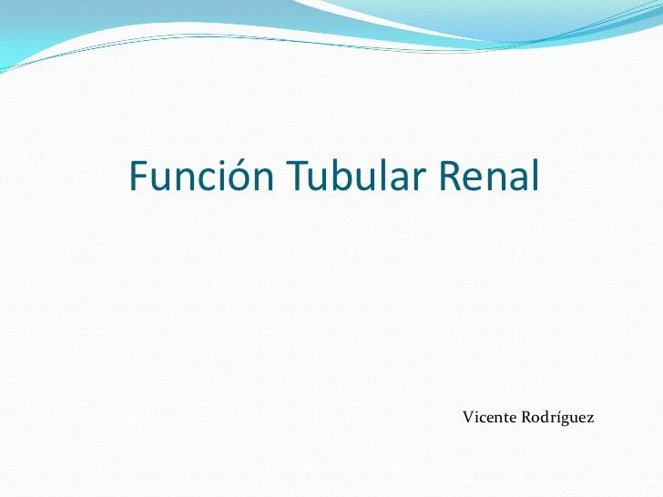 Función Tubular Renal<br />Vicente Rodríguez <br />