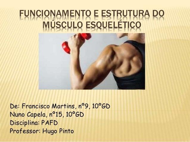 FUNCIONAMENTO E ESTRUTURA DO  MÚSCULO ESQUELÉTICO  De: Francisco Martins, nº9, 10ºGD  Nuno Capela, nº15, 10ºGD  Disciplina...