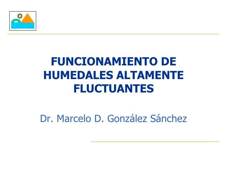 FUNCIONAMIENTO DE HUMEDALES ALTAMENTE FLUCTUANTES Dr. Marcelo D. González Sánchez