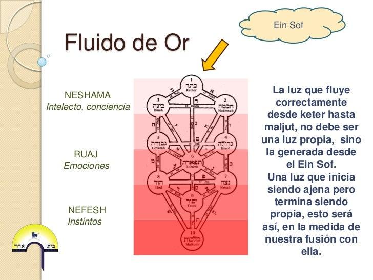 Ein Sof    Fluido de Or                           La luz que fluye     NESHAMAIntelecto, conciencia      correctamente    ...