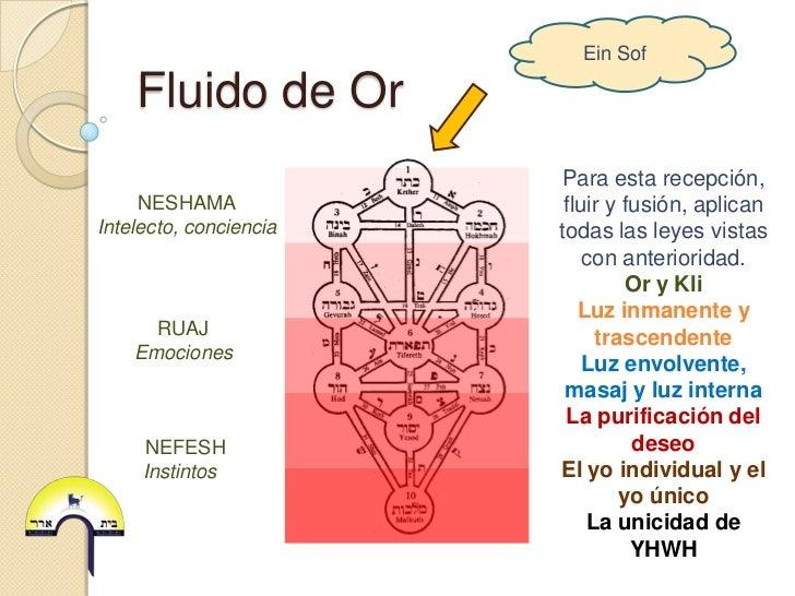 Ein Sof    Fluido de Or                        Para esta recepción,     NESHAMA             fluir y fusión, aplicanIntelec...