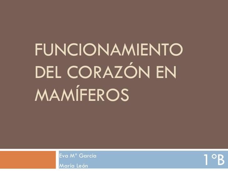 FUNCIONAMIENTODEL CORAZÓN ENMAMÍFEROS  Eva Mª García  María León      1ºB