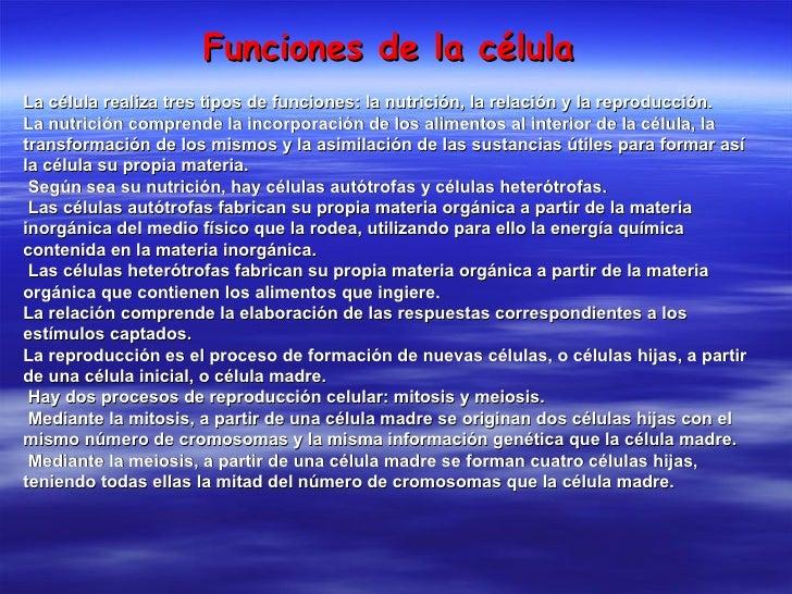 Funciones de la célula La célula realiza tres tipos de funciones: la nutrición, la relación y la reproducción. La nutrició...