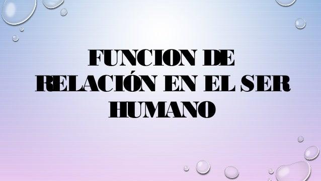 FUNCION DE RELACIÓN EN EL SER HUMANO