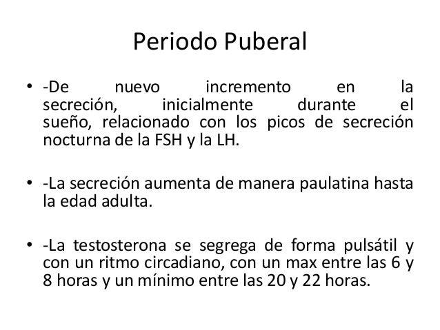 Periodo Puberal• -De nuevo incremento en lasecreción, inicialmente durante elsueño, relacionado con los picos de secreción...