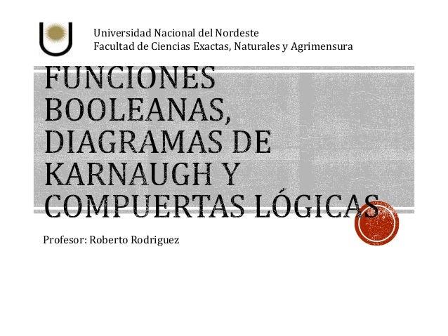 Universidad Nacional del Nordeste  Facultad de Ciencias Exactas, Naturales y Agrimensura  Profesor: Roberto Rodriguez