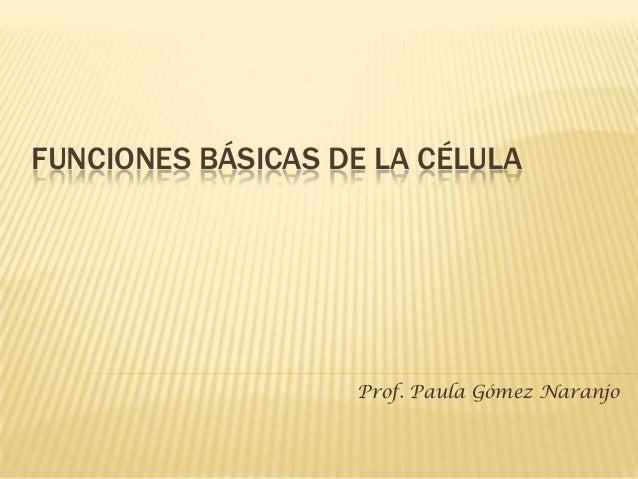 FUNCIONES BÁSICAS DE LA CÉLULA                   Prof. Paula Gómez Naranjo