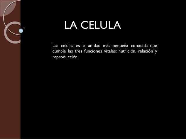 LA CELULA Las células es la unidad más pequeña conocida que cumple las tres funciones vitales: nutrición, relación y repro...