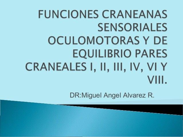 DR:Miguel Angel Alvarez R.