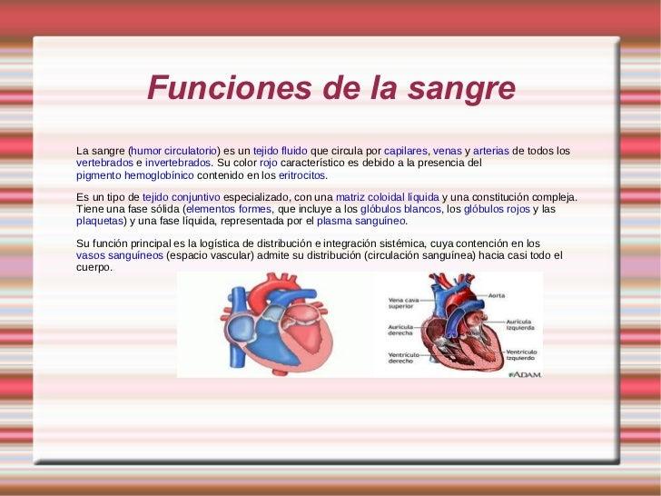Funciones de la sangre La sangre ( humor circulatorio ) es un  tejido   fluido  que circula por  capilares ,  venas  y  ar...