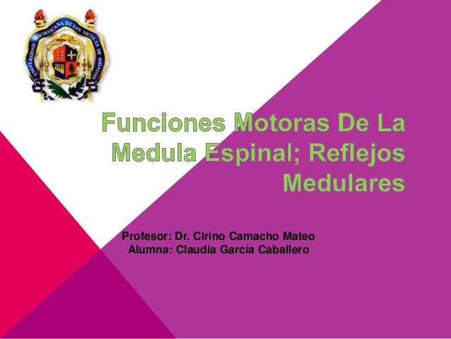 Profesor: Dr. Cirino Camacho Mateo Alumna: Claudia García Caballero