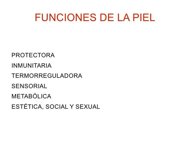 FUNCIONES DE LA PIEL <ul><li>PROTECTORA