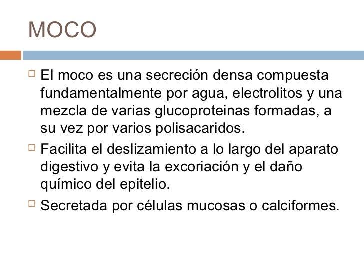 SECRECION DEL TUBO DIGESTIVO Slide 3