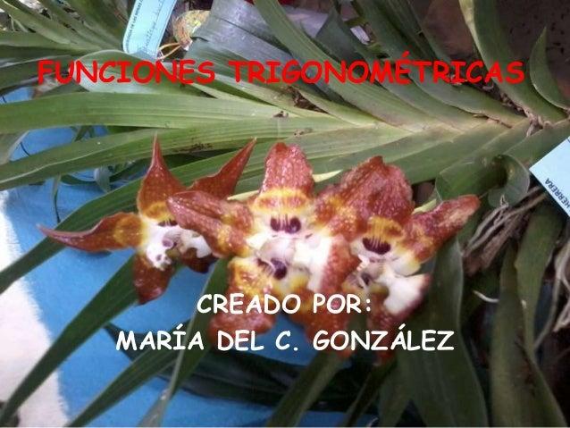 CREADO POR: MARÍA DEL C. GONZÁLEZ FUNCIONES TRIGONOMÉTRICAS