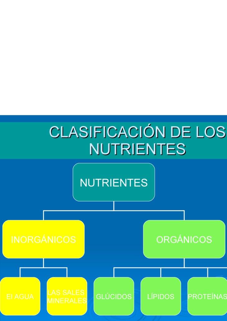 Funciones vitales nutrientes for Clasificacion de los planos arquitectonicos
