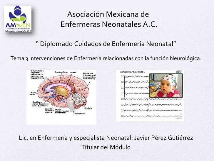 """Asociación Mexicana de                   Enfermeras Neonatales A.C.          """" Diplomado Cuidados de Enfermería Neonatal""""T..."""
