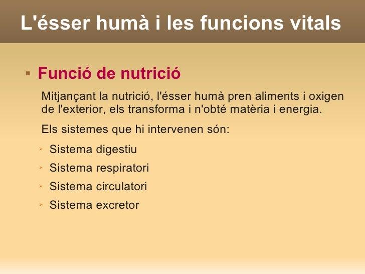 Lésser humà i les funcions vitals   Funció de nutrició    Mitjançant la nutrició, lésser humà pren aliments i oxigen    d...