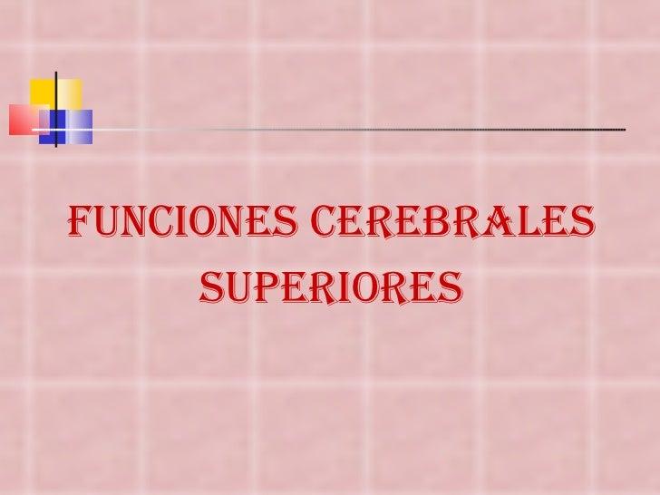 <ul><li>FUNCIONES CEREBRALES </li></ul><ul><li>SUPERIORES </li></ul>