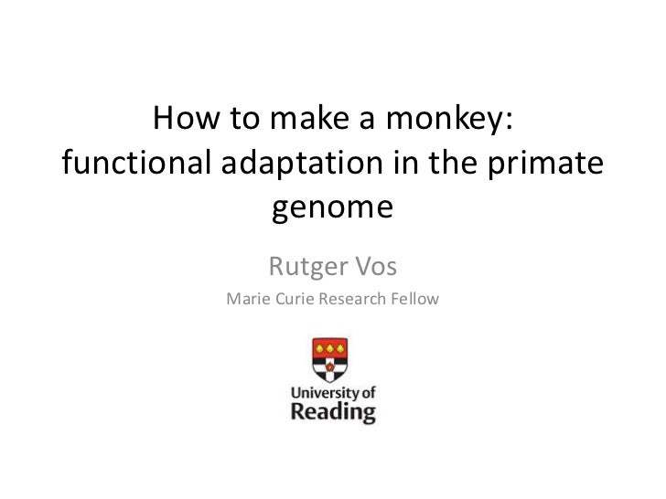 How to make a monkey: functional adaptation in the primate genome<br />Rutger Vos<br />Marie Curie Research Fellow<br />