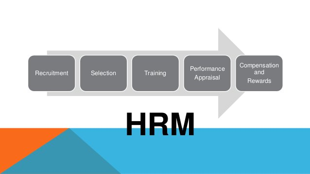 Recruitment Selection Training Performance Appraisal Compensation and Rewards HRM