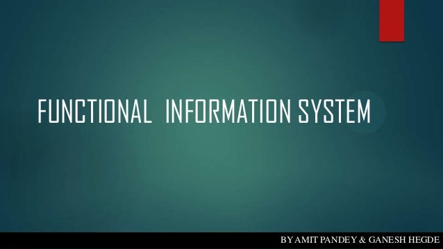 FUNCTIONAL INFORMATION SYSTEM  BY AMIT PANDEY & GANESH HEGDE