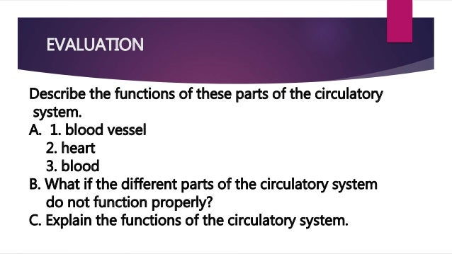 Function of each part of the circulatory system lesson 2 17 evaluation describe the functions of these parts ccuart Images