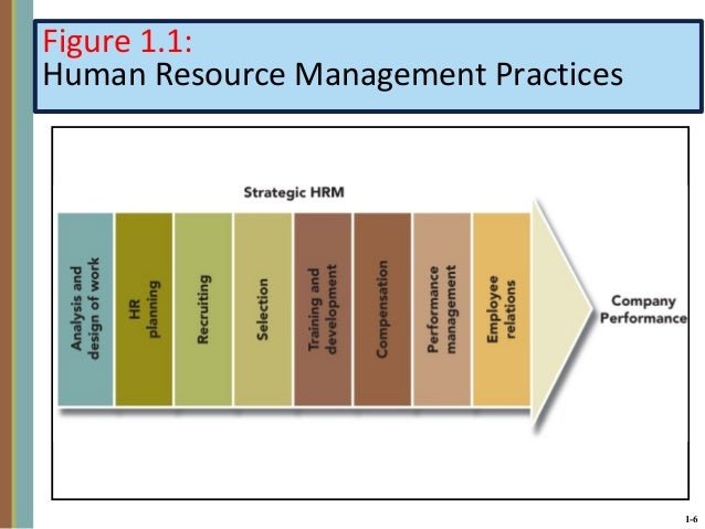 what are the human resource management practices