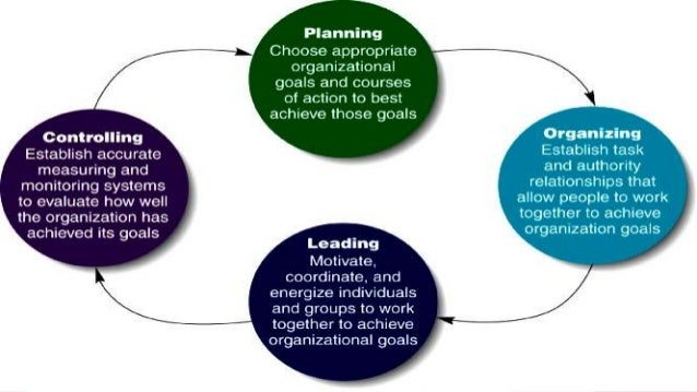 basic functions of management process