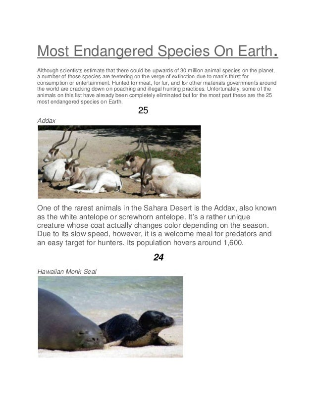 Most Endangered Species On Earth. Although scientists estimate that there could be upwards of 30 million animal species on...