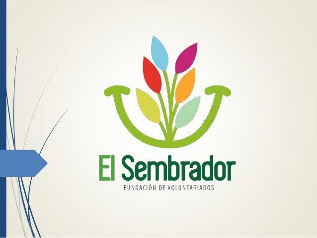 ¿Quiénes Somos?  La Fundación de Voluntariados El Sembrador es una organización civil sin ánimo de lucro, constituida leg...